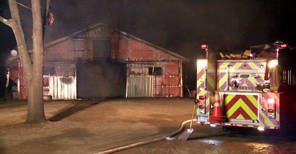 Trzynaście koni spłonęło w pożarze. To mogło być podpalenie