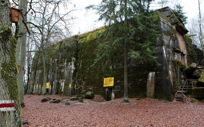 Była kwatera Adolfa Hitlera – Wilczy Szaniec – ponownie w rękach Lasów Państwowych