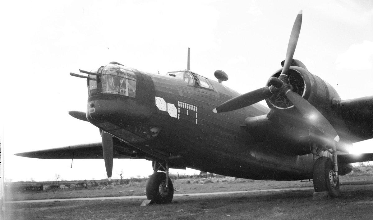 Holendrzy oddają hołd polskim lotnikom z II wojny światowej