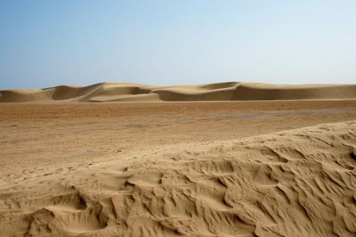 Tragedia na Saharze. 44 uchodźców zmarło z pragnienia