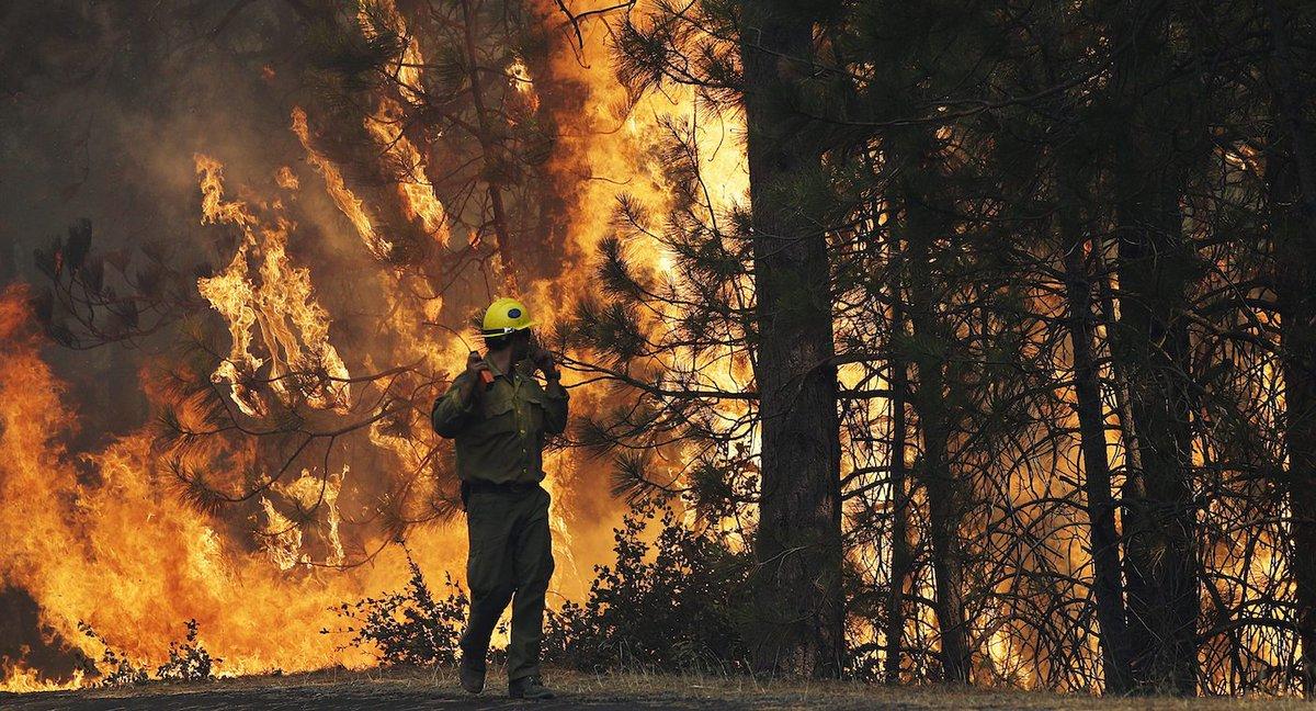 Miał być kontrolowany pożar, a spłonęło 36 domów