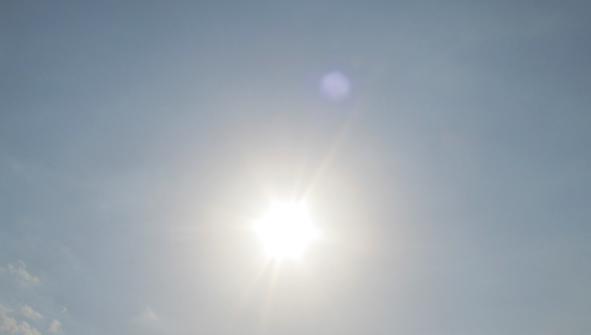 Niemcy: Padł kolejny rekord temperatury