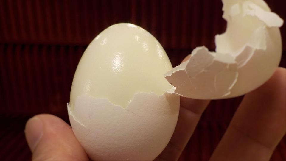 GIS: Do Polski trafiły jajka z Holandii