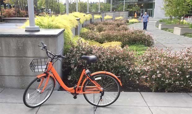 Pomarańczowe rowery w  Bellevue