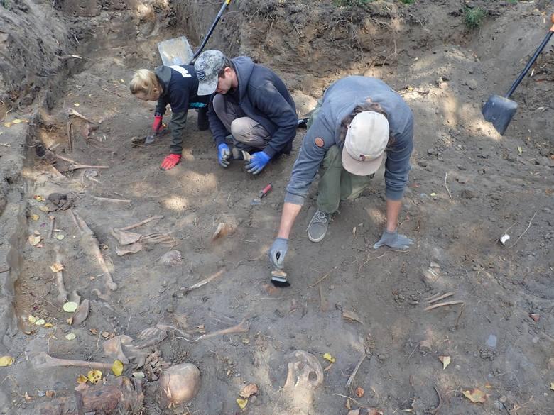 Poznań: Masowy grób żołnierzy niemieckich odkryto w środę przy ul. Wyspiańskiego
