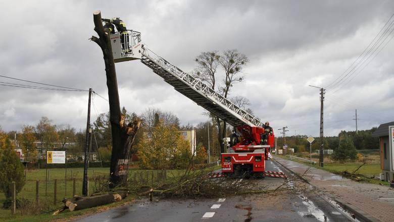 Orkan Grzegorz nad Opolszczyzną: bez prądu jest 12,5 tys. odbiorców