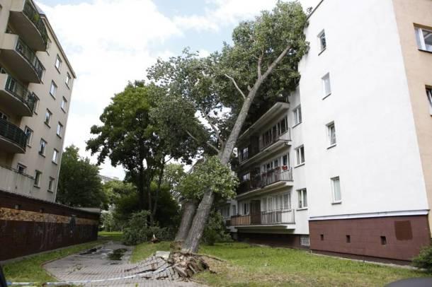 Ogromne zniszczenia po wichurze na Mazowszu. Brak prądu, ofiary śmiertelne