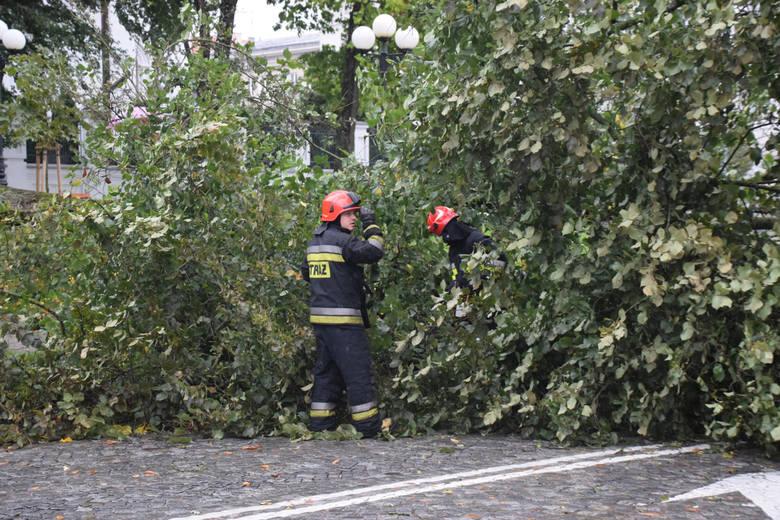 """Nadciąga orkan """"Grzegorz"""". Podwójne ostrzeżenie IMGW"""
