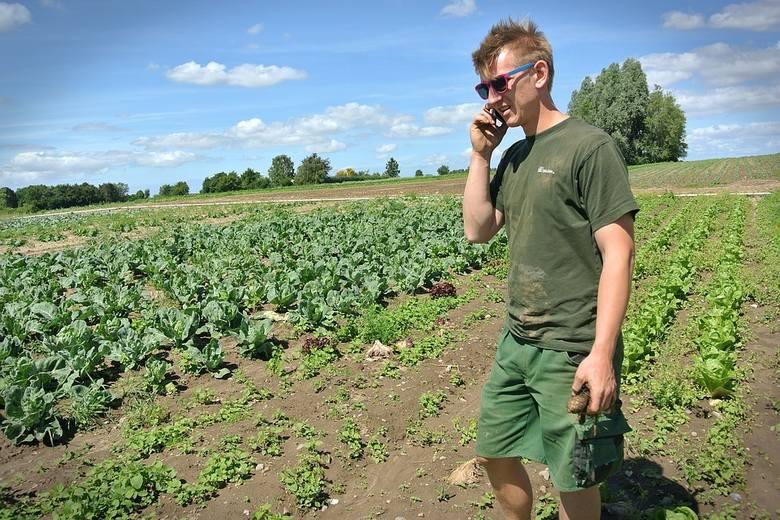 Susza doskwiera rolnikom. Rząd pomoże…