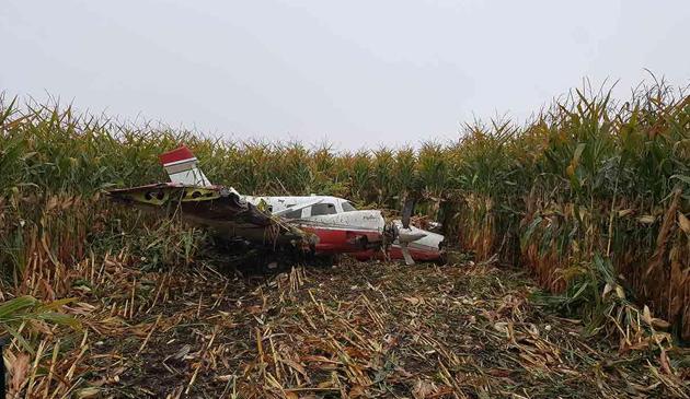 Awaryjne lądowanie małego samolotu na polu kukurydzy