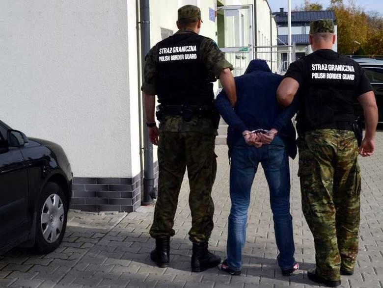 Śląsk: Przemycali ludzi z Ukrainy do Polski. Brali za wizy do 400 euro