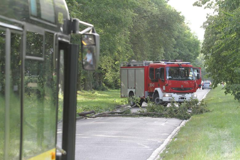 5 osób zostało rannych w wichurach, które przechodziły nocą nad Polską