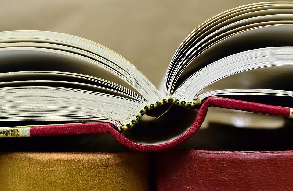 Chiny: Ponad milion sprzedanych książek polskich autorów