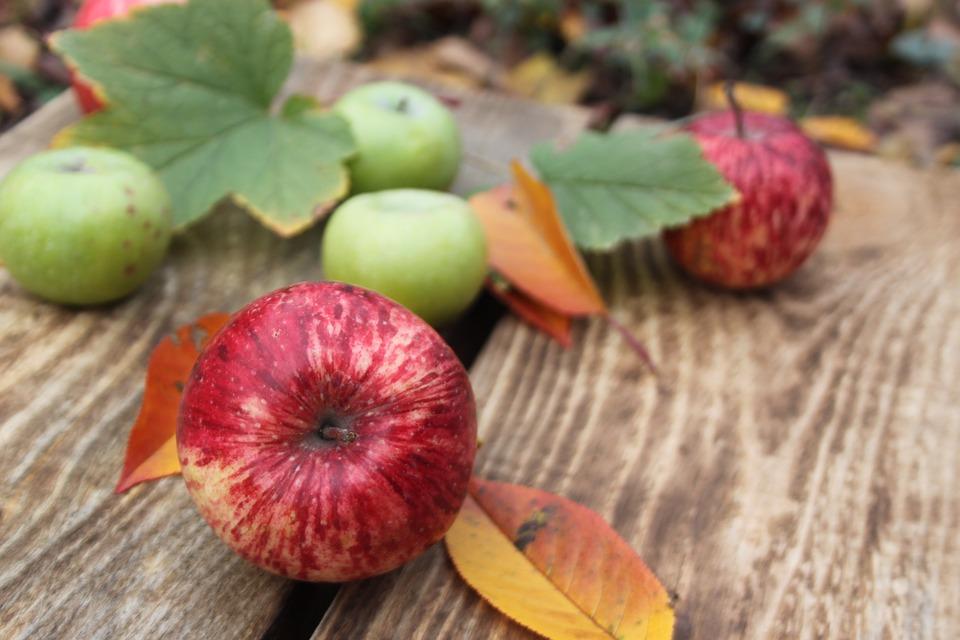 Niższe zbiory jabłek w Polsce