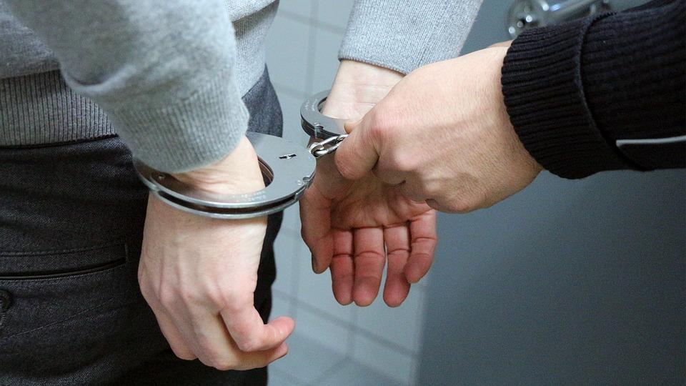 22 podejrzanych o pedofilię zatrzymanych w Michigan