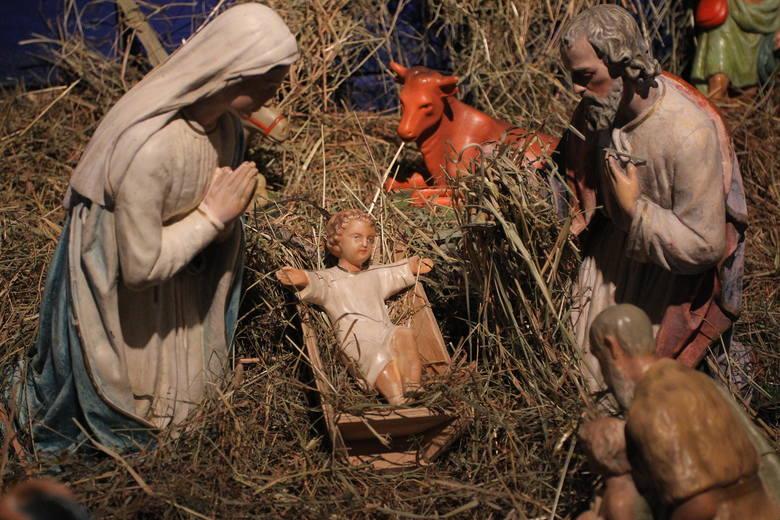 Papież: Żłóbek to symbol pokoju