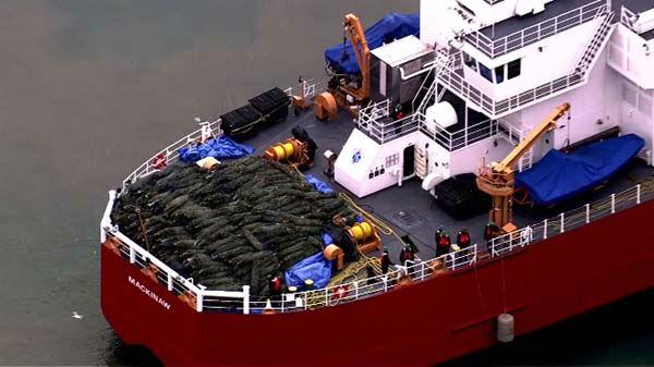 Do Navy Pier przybił statek z choinkami