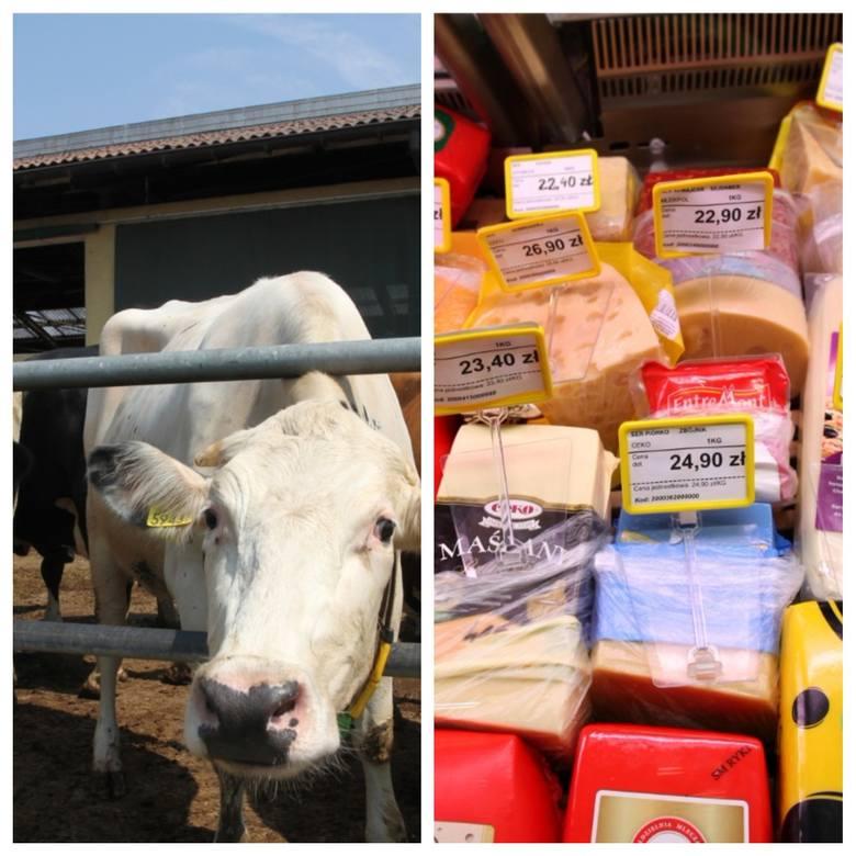 Ceny serów w Polsce już znacznie spadły, wszystko przez import
