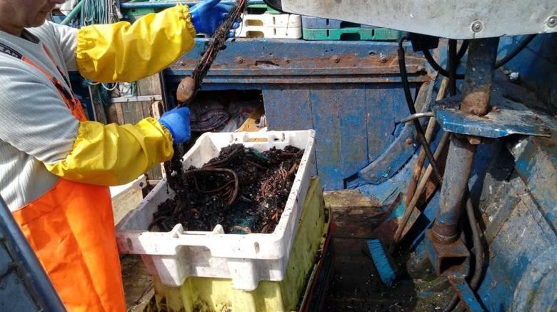 """Wyłowiono 147 ton śmieci z morza. To efekt akcji """"Czysty Bałtyk"""""""