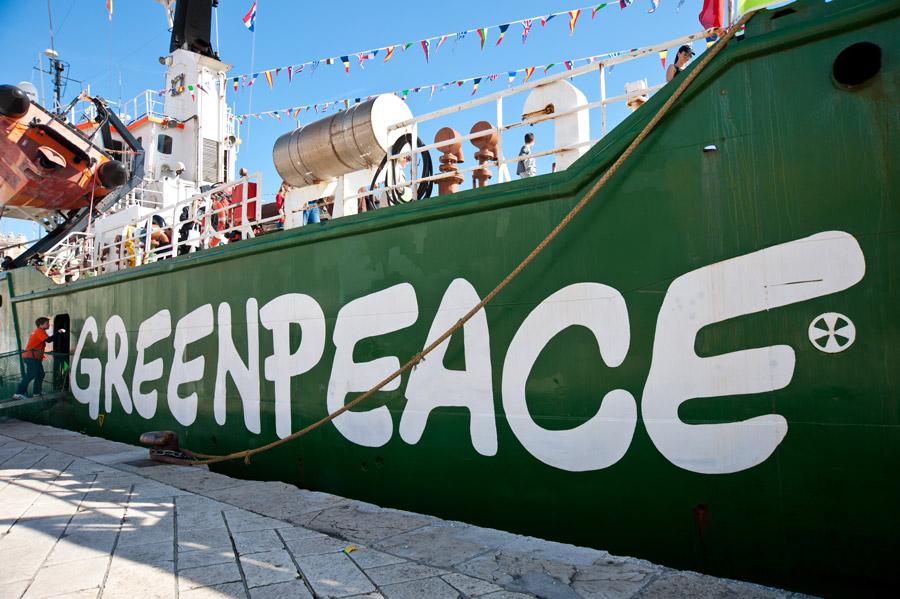 Greenpeace: O sprawie inwestycji w Puszczy Noteckiej dowiedzieliśmy się z mediów
