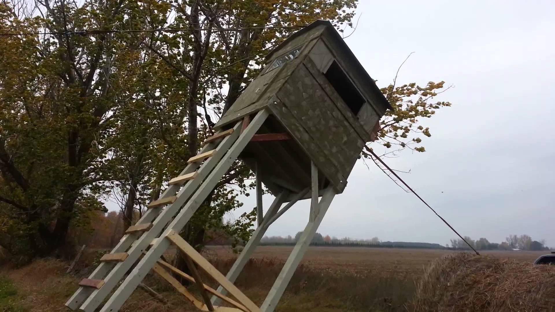 Kto w Puszczy Białowieskiej niszczy ambony myśliwskie?