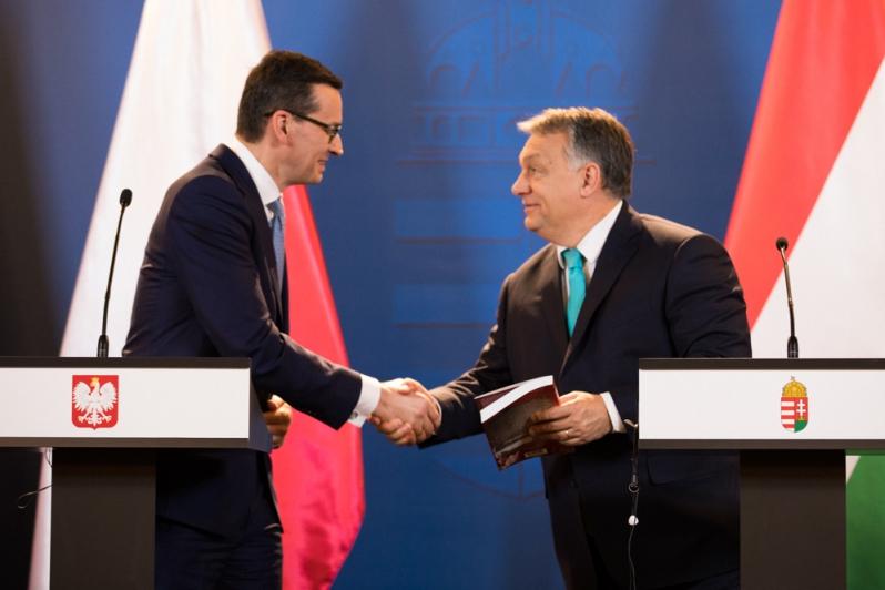 Polska może liczyć na poparcie Węgier