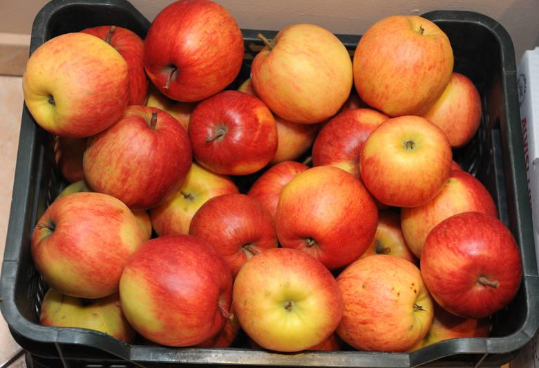 Polskie jabłka w sklepach droższe od cytrusów