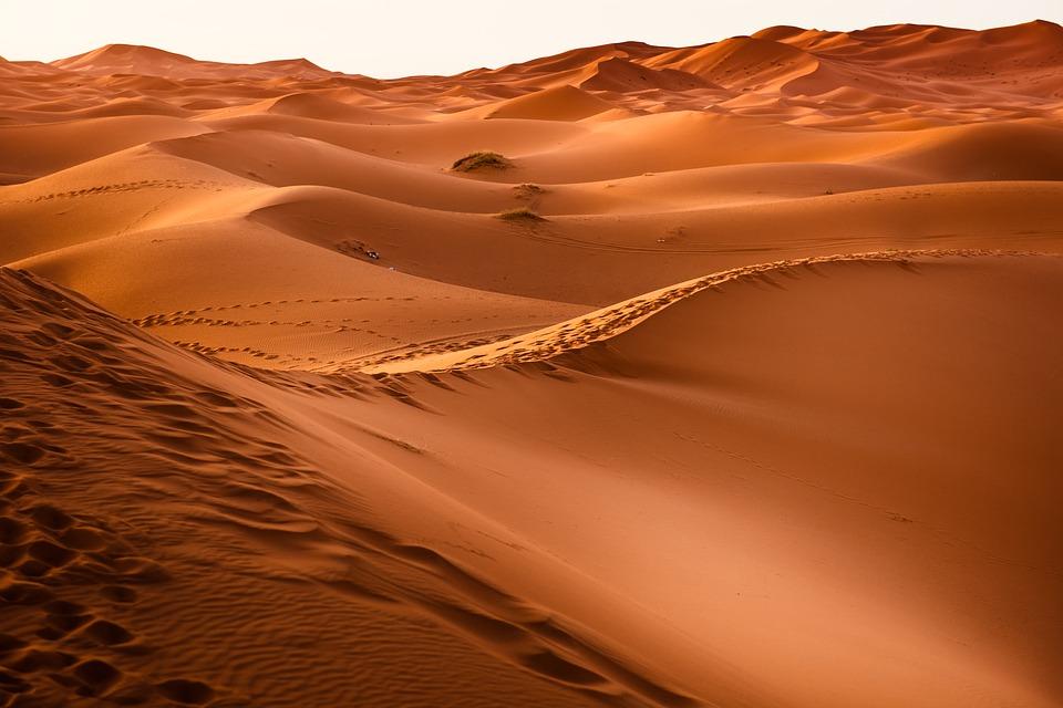 Międzynarodowa ekipa przeszła największą pustynię świata