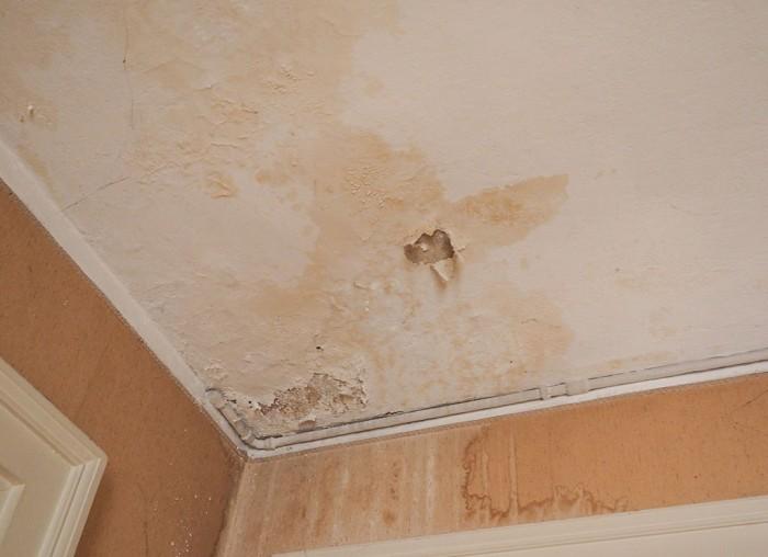 Dziury w ścianach, robaki, woda kapiąca z sufitu, pleśń. Setki tysięcy młodych Anglików mieszka w fatalnych warunkach