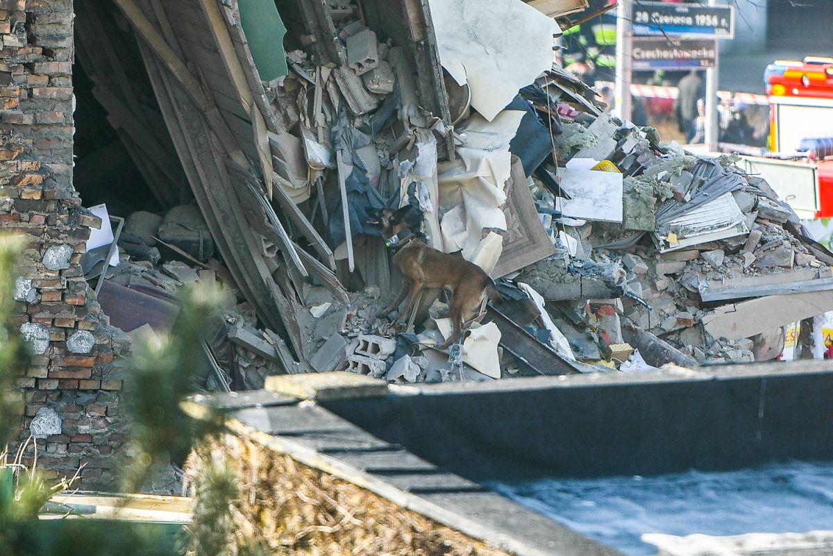 Poznań: Morderstwo i wybuch na Dębcu: Rozpoznano ciała 3 ofiar. Przesłuchano ponad 30 świadków