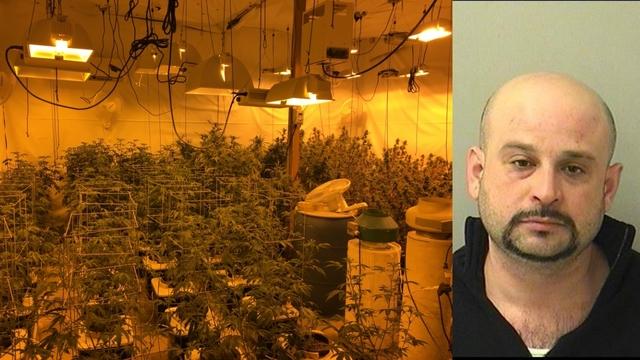 Mieszkaniec Grayslake aresztowany za nielegalną plantację marihuany