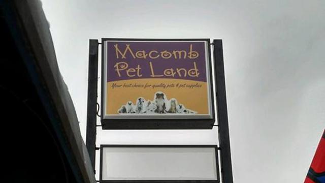 Macomb: W sklepie znaleziono 41 martwych zwierząt