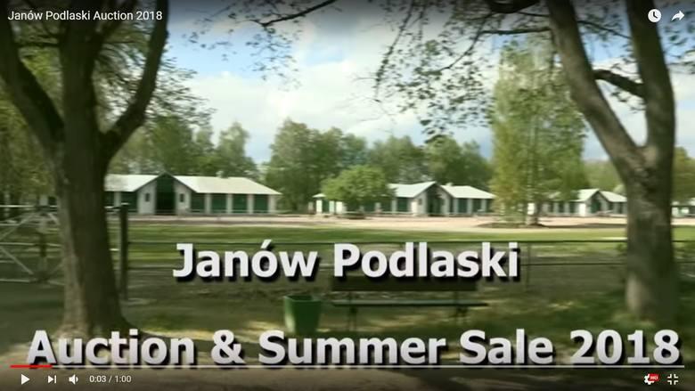 """Kontrowersje wokół klipu promującego aukcję koni w Janowie. """"Czy to jest żart?"""""""