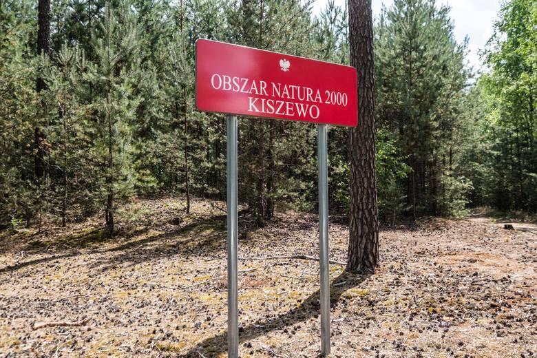 Stobnica: Uniwersytet Przyrodniczy sprzedał spółce budującej zamek Wilczy Park za blisko 700 tys. zł