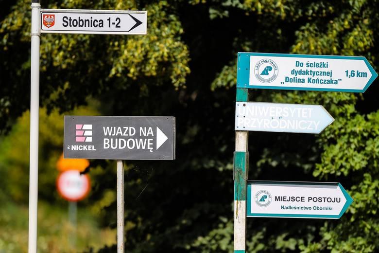 Inwestor o budowie w Puszczy Noteckiej: Nie wpłynie negatywnie na środowisko naturalne