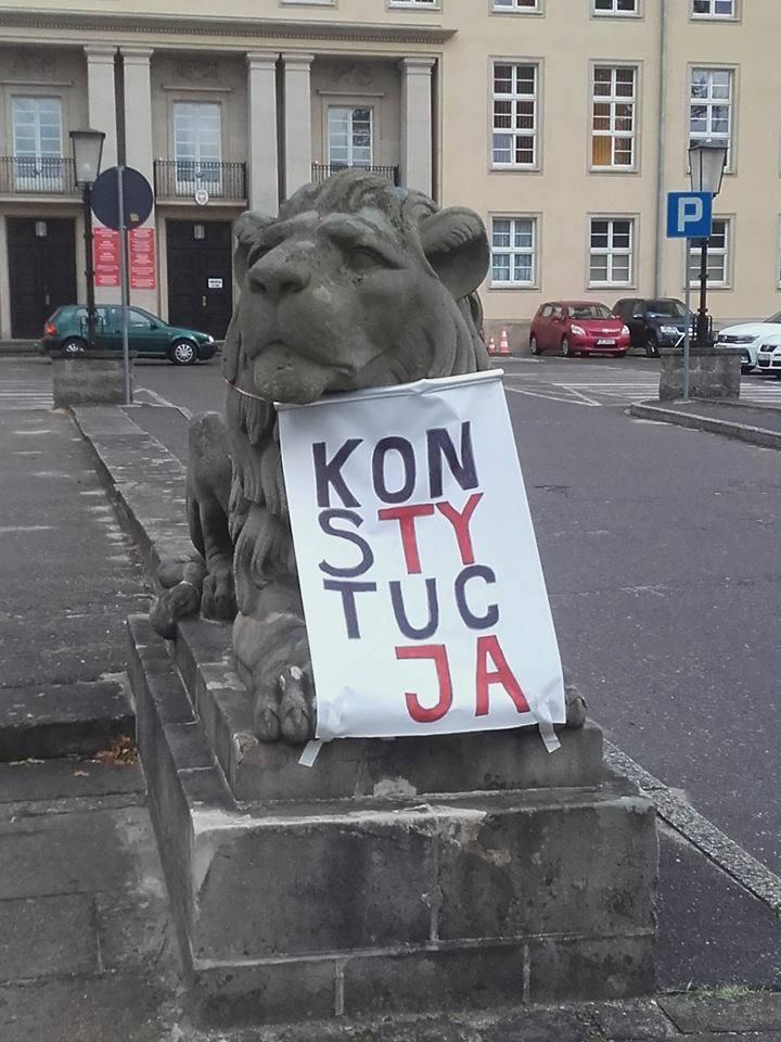 Szczecin, Warszawa, Kraków, Łódź, Poznań, Toruń, Koszalin… KOD przebiera pomniki