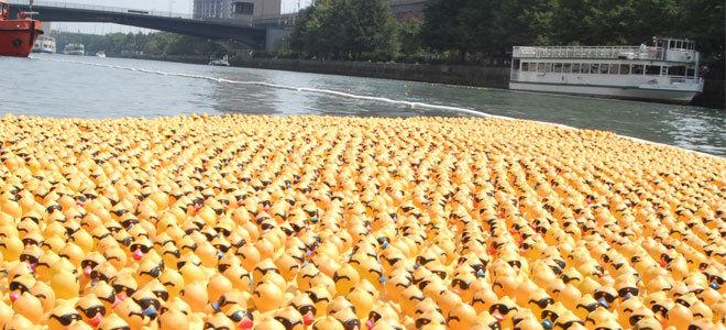 Wyścig żółtych kaczuszek na rzece Chicago