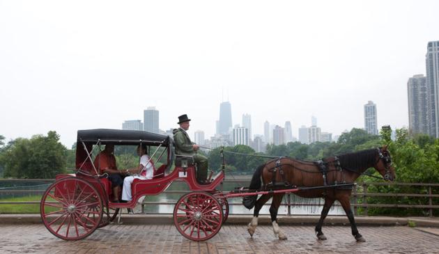 Chicagowskie dorożki mogą przejść do historii