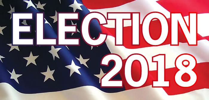 """W sobotę organizowany jest """"Marsz do wyborów 2018"""""""