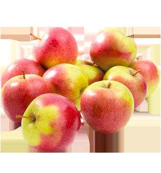 Jabłka droższe od grejpfrutów. Za kilogram płacimy już nawet ponad 4 zł