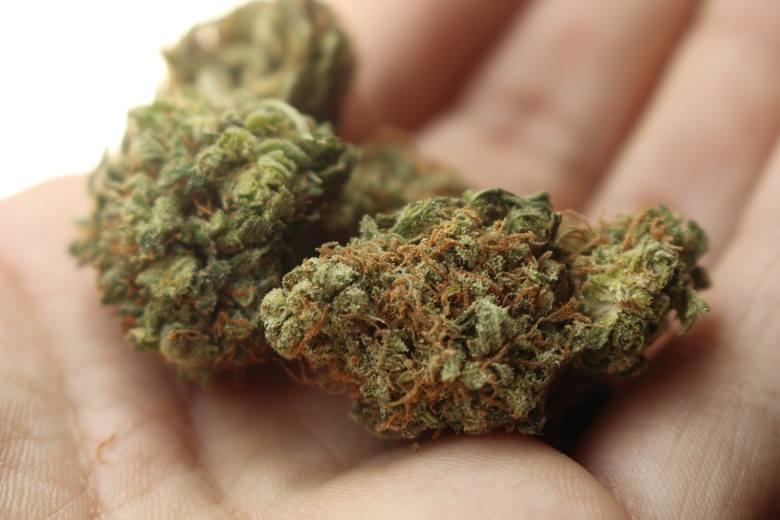 Uczniowie zjedli cukierki z marihuaną. Trafili do szpitala