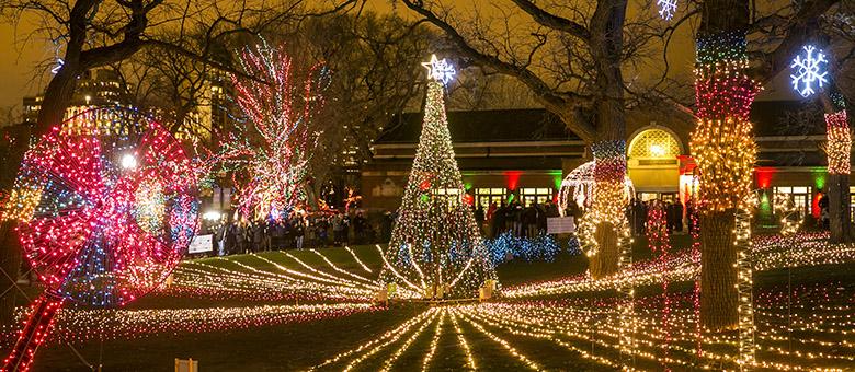 Świąteczna iluminacja w Lincoln Park Zoo