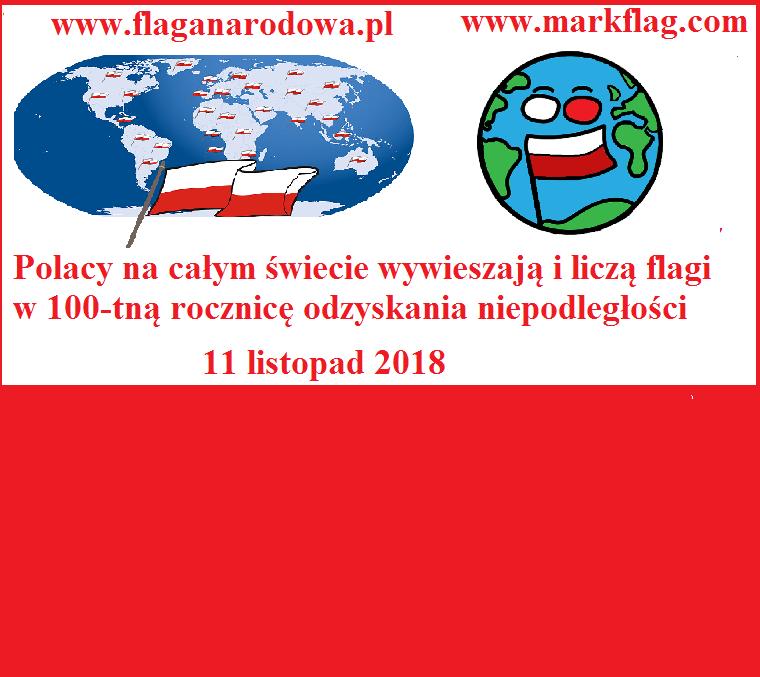 11 listopada odbędzie sie światowa akcja liczenia polskich flag