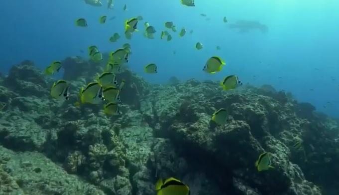 Chiny chcą zbudować bazę do eksploracji głębin morskich