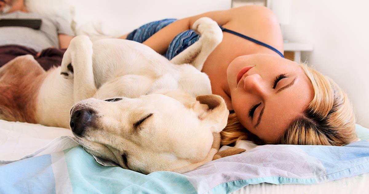 Kobietom lepiej się śpi kiedy na łóżku jest pies
