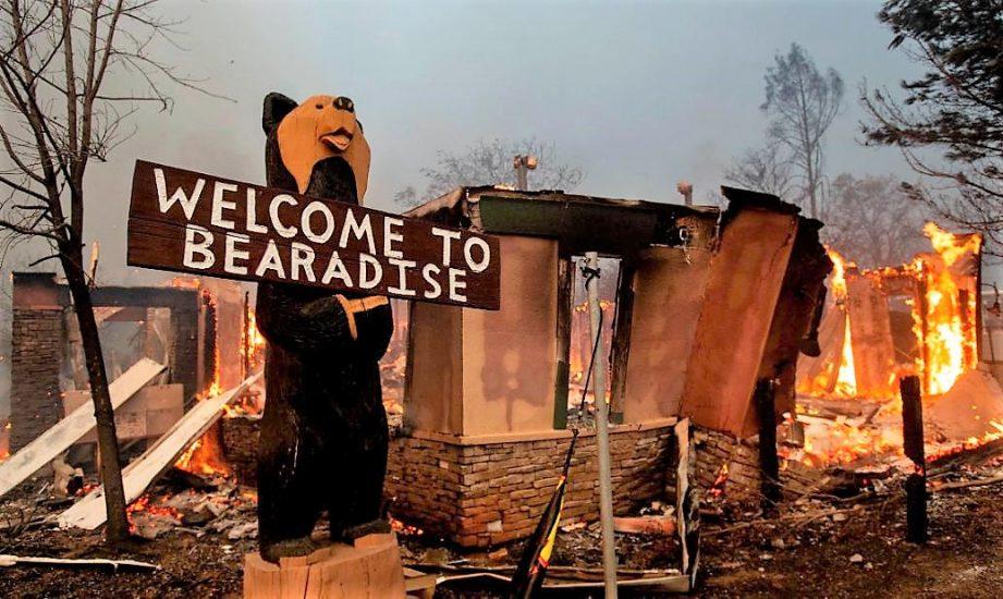 Już 42 ofiary pożaru lasów w Kalifornii. Najwięcej w historii (VIDEO)