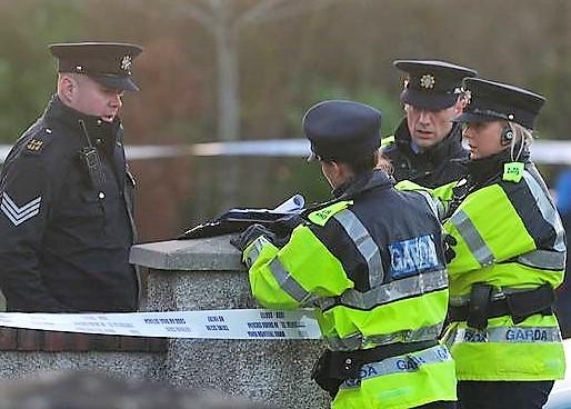 Makabryczne zabójstwo Polki w Irlandii