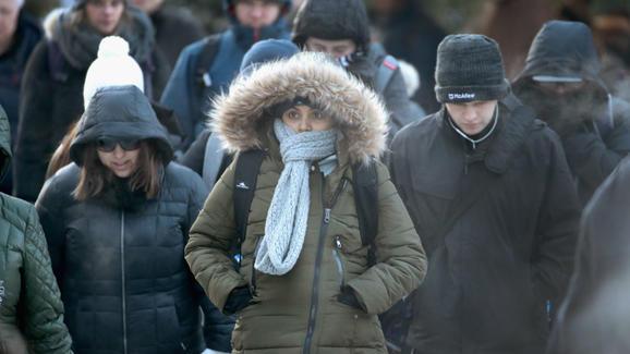 37 ofiar śmiertelnych niskich temperatur w powiecie Cook