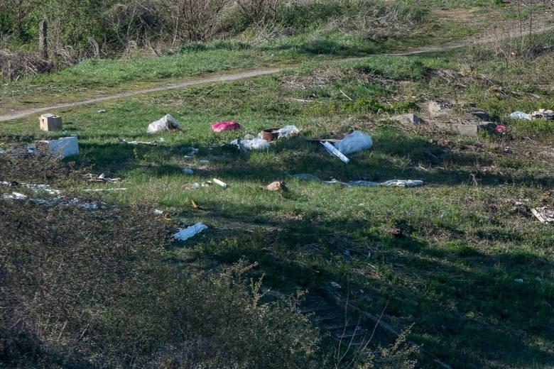 Międzynarodowe Targi Poznańskie posprzątały świat. Ale śmieci najpierw… dowieziono