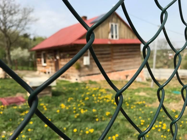 Lubelskie: Rozczłonkowane zwłoki znaleziono w powiecie janowskim